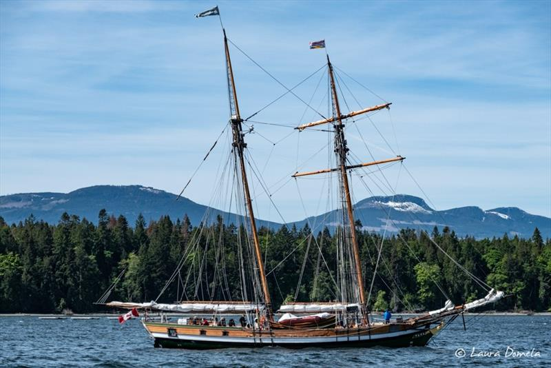 Tall ship anchored in Clam Bay photo copyright Laura Domela taken at  and featuring the Power boat class